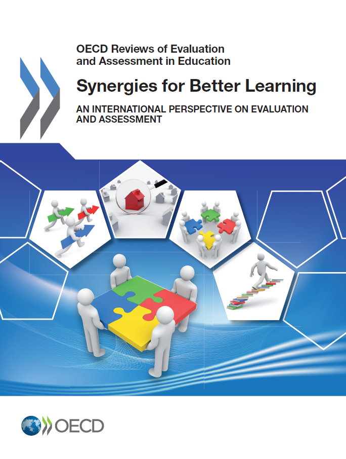 Copertina di Synergies for Better Learning